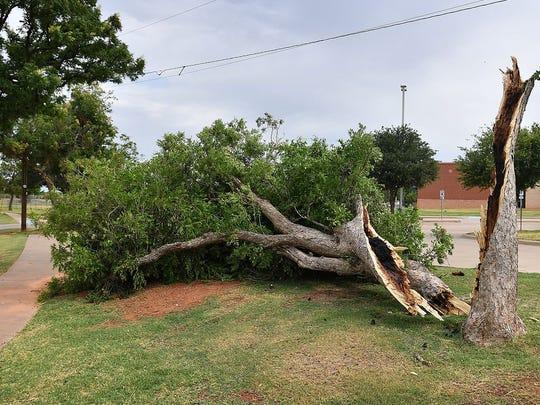 636640719308470114-Storm-Damage-060818-3